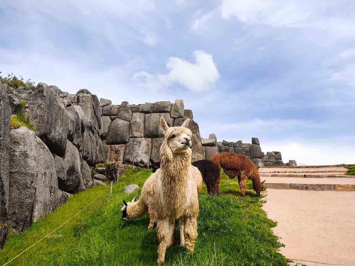 Best Trails for Trekking in Cusco
